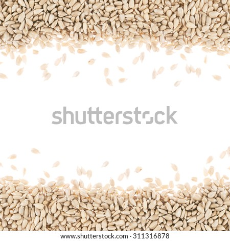 Sunflower seeds composition against the white background - stock photo
