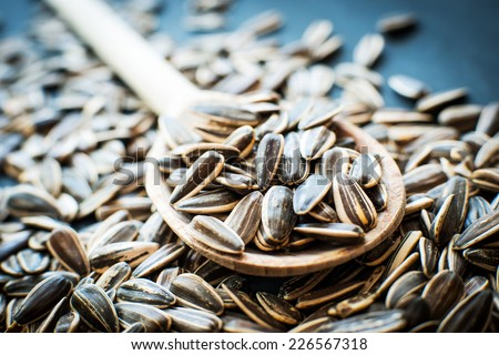 sunflower seeds in a wooden spoon - stock photo