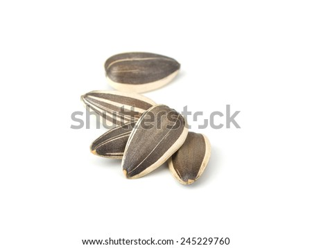 Sunflower seeds isolated on white background close-up