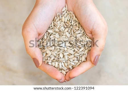 Sunflower seeds' kernel in woman hands - stock photo
