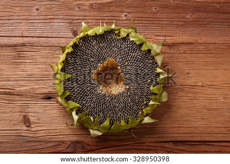 Sunflower with sunflower seeds on wooden texture - stock photo