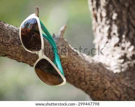 sunglasses on a tree