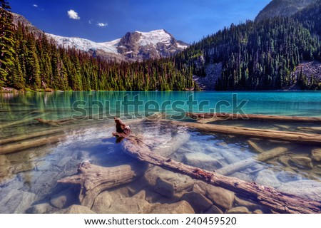 Sunken logs nestled in a bright clear snow-capped mountain lake - stock photo