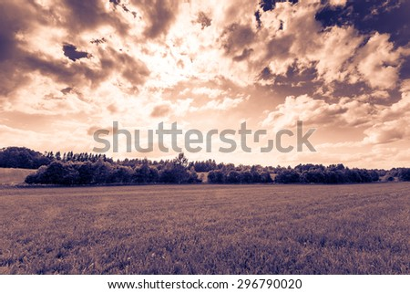 Sunlight breaking through the clouds over the field in the forest. Image in the orange-blue toning - stock photo
