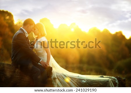 Sunlight bride and groom at wedding in the forest sitting on the - stock photo