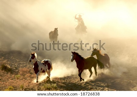 Sunlight Horses and cowboy galloping and through the desert - stock photo