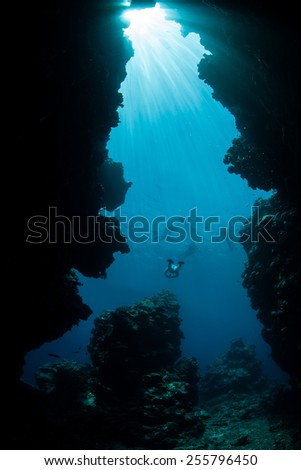 Sunlight pours down into an underwater grotto on the barrier reef in Palau, Micronesia. Palau is known for its beautiful rock islands and world class scuba diving and snorkeling. - stock photo