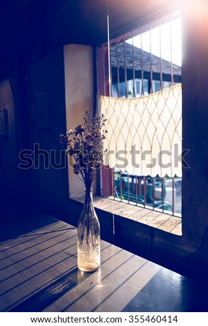 sunlight that passes through window and flowers in vase