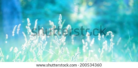 sunny abstract nature background - stock photo