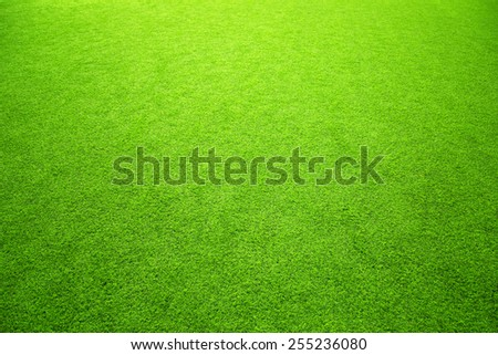 Sunny artificial green grass background. Selective focus used. - stock photo