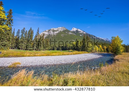 Sunny autumn day in the Canadian Rockies. Dry creek in a mountain valley Banff park. Flock of birds flying in the valley
