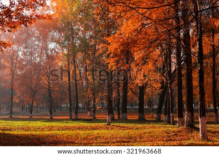 sunny autumn landscape - stock photo