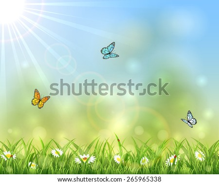 Sunny background with butterflies, ladybird and flowers in the grass, illustration. - stock photo