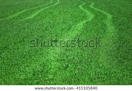 Sunny blurred summer green meadow grass with rut path. Selective focus used. - stock photo