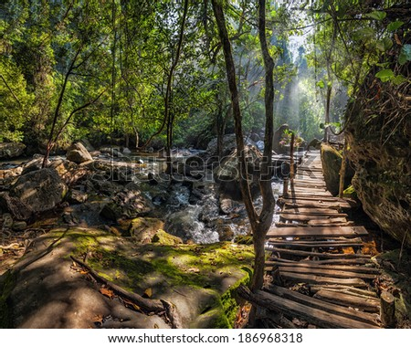 Sunny day at tropical rain forest landscape with wooden bridge and river near Kulen waterfall in Cambodia - stock photo