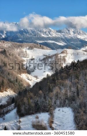 Sunny day of a winter, on wild transylvania hills with Bucegi mountains in background.. 09.01.2016. Sirnea. Romania. Low key, dark background, spot lighting, and rich Old Masters