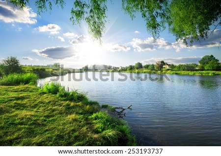 Sunny day on a calm river in summer