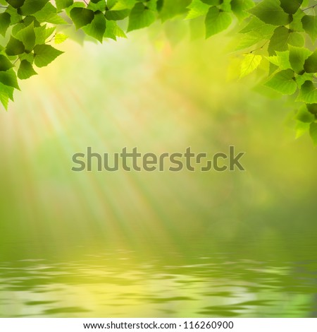 Sunny day on the forest lake, abstract natural backgrounds - stock photo