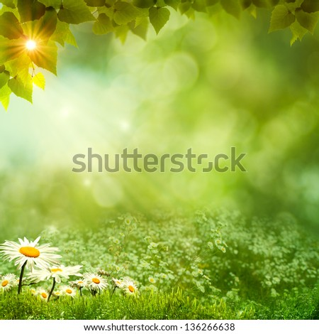 Sunny day on the meadow, environmental backgrounds - stock photo