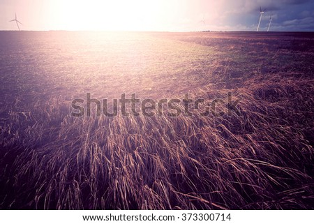 Sunny field at summer. Retro vintage instagram picture. - stock photo