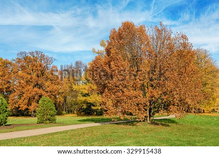 sunny landscape with autumn trees in the park - stock photo