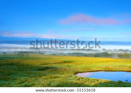 Sunny meadow and lake . Africa. Kenya. Lake Nakuru