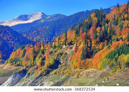 Sunny mountain landscape with colorful trees in autumn - stock photo