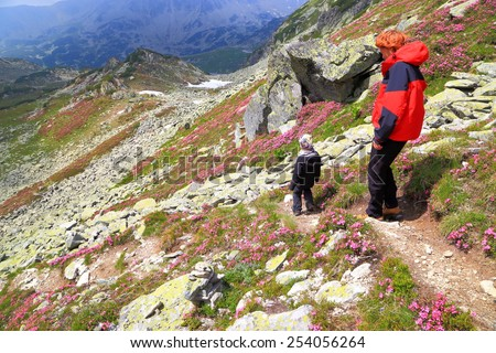 Sunny mountain trail and young boy accompanied by his mother hiking amongst pink flowers - stock photo