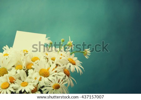 Sunny spring background with chamomile flowers