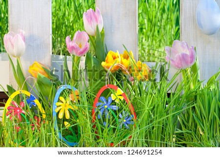 sunny spring background with fence and beautiful Tulips in green grass with colorful Easter eggs, happy easter - stock photo