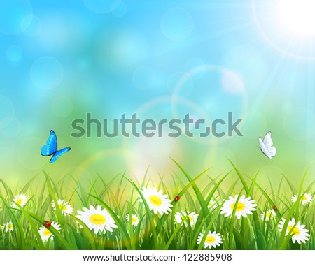 Sunny summer day and blue sky background, butterflies flying above the grass with flowers, illustration. - stock photo