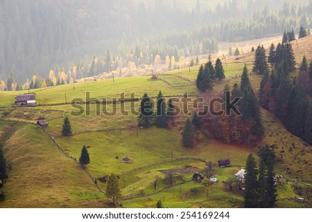Sunny summer day in Carpathian village.