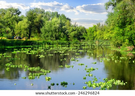 Sunny summer day on a beautiful river - stock photo