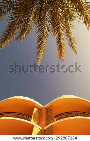 Sunny summer evening at the resort - the view from the bottom to the top of the palm and the upper floors of the hotel in Egypt - stock photo