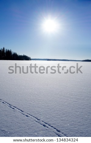 Sunny Swedish Winter Landscape with blue sky - stock photo