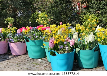 Sunny terrace with a lot of flowers in the vivid pots - stock photo