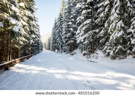 sunny tourist hiking track in winter snow, in western carpathian, tatry mountains