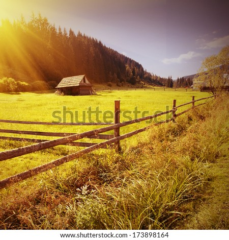 Sunny vintage picture of Carpathian valley with lonely koliba - stock photo