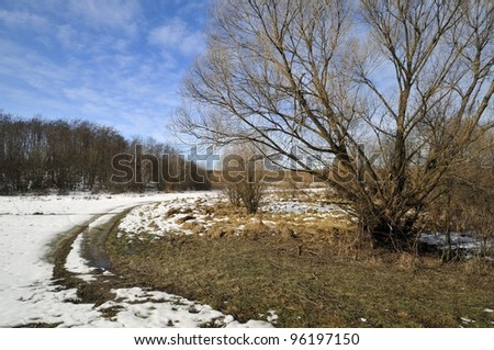 Sunny winter day in the countryside