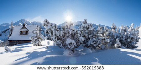 Sunny winter in the mountains