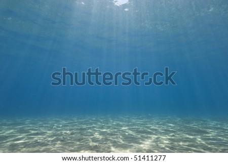 Sunrays reflecting on the sandy bottom of a shallow bay. Sharm el Sheikh, Red Sea, Egypt. - stock photo