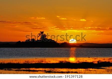 sunrise ab birds - stock photo