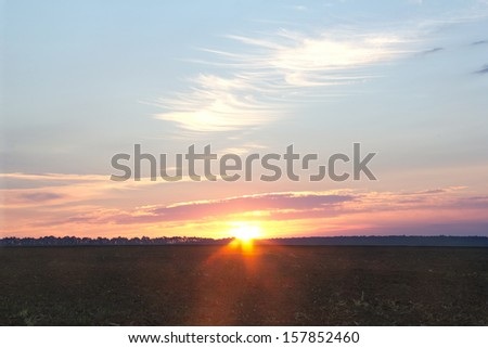 sunrise among field and trees with a dense fog and blue sky