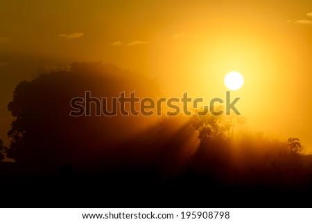 sunrise and misty - stock photo