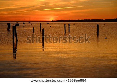 Sunrise and wood pilings after docks are removed for the winter in a north east coast harbor - stock photo