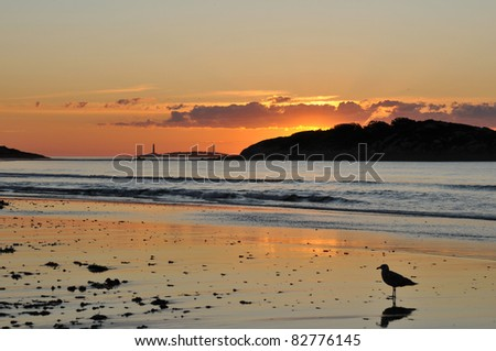 Sunrise at Gloucester's Good Harbor Beach with the twin lights at Thacher's Island in the background