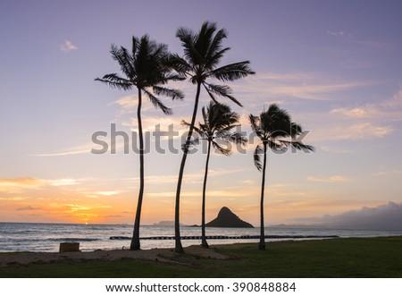 Sunrise at Mokoli?i -  Kualoa Regional Park, Oahu, Hawaii  - stock photo