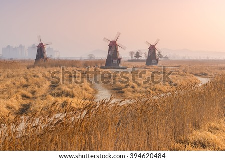 Sunrise at Old wooden windmills the field in the park,south korea.