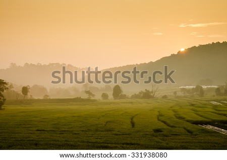 Sunrise at terraced rice field , Mae Kalng Luang , Chiang Mai , Thailand  - stock photo