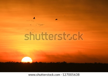Sunrise at yellow waters in the wetland of Kakadu National Park,